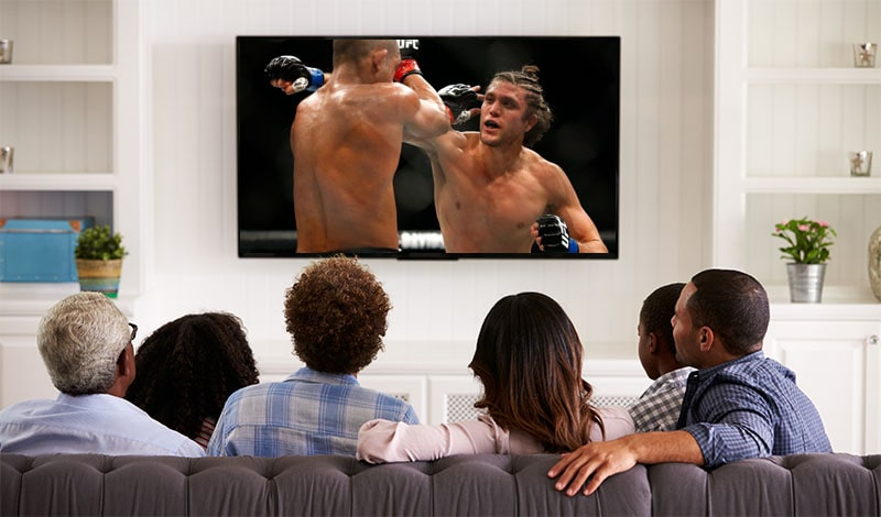 people watching ufc fight