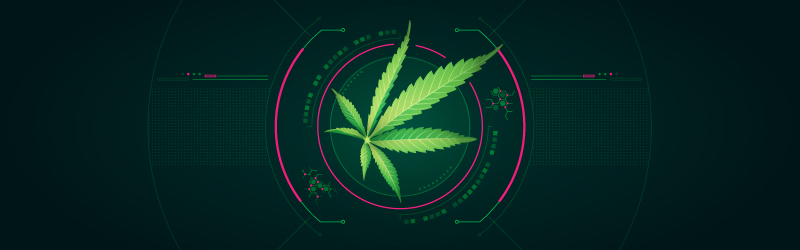 technology and cannabis