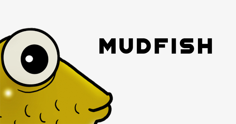 Mudfish VPN review